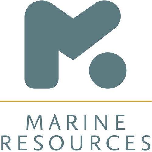 Job of the Day: Design Engineer - Performance/Luxury Motor Yachts https://buff.ly/2Xnlf4u #recruitment #jobopportunity #marineindustry