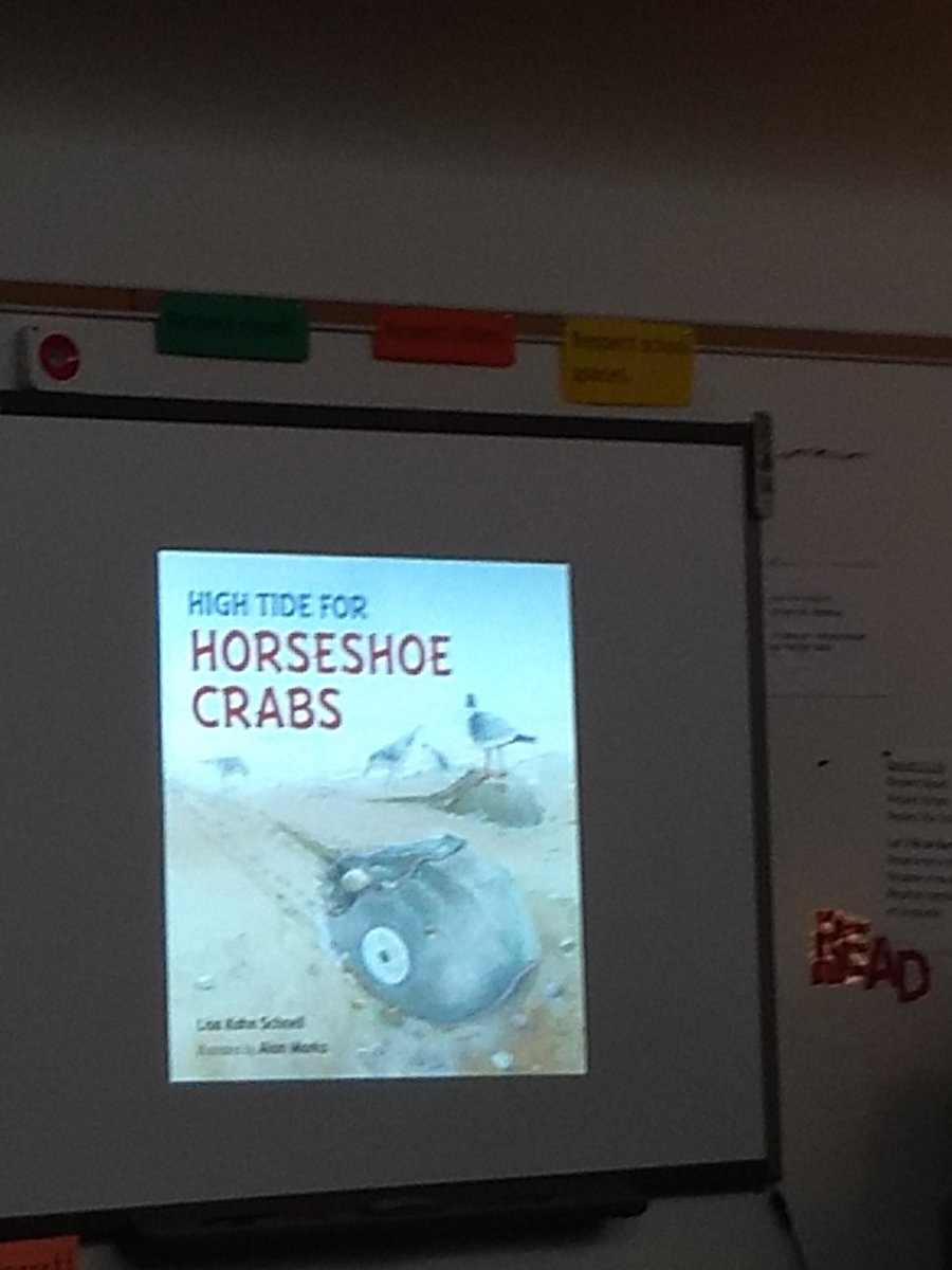 Learning about horseshoe crabs. <a target='_blank' href='http://search.twitter.com/search?q=KWBpride'><a target='_blank' href='https://twitter.com/hashtag/KWBpride?src=hash'>#KWBpride</a></a> <a target='_blank' href='https://t.co/T8phaLI24A'>https://t.co/T8phaLI24A</a>