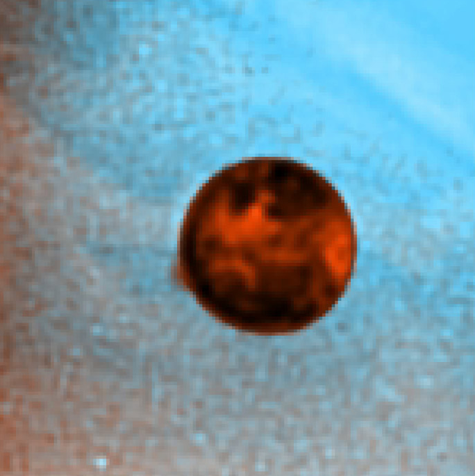 #HubbleClassic #OTD in 1997 Hubble released this image of a 250-mile-high plume (at left) spouting from Jupiters volcanic moon Io. Erupting from Ios Pele volcano, the gas & dust mustve been blasted at over 2,000 miles per hour to form a plume that big: hubblesite.org/news_release/n…