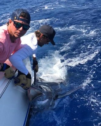 Grand Canary - Jurate went 2-2 on Blue Marlin.
