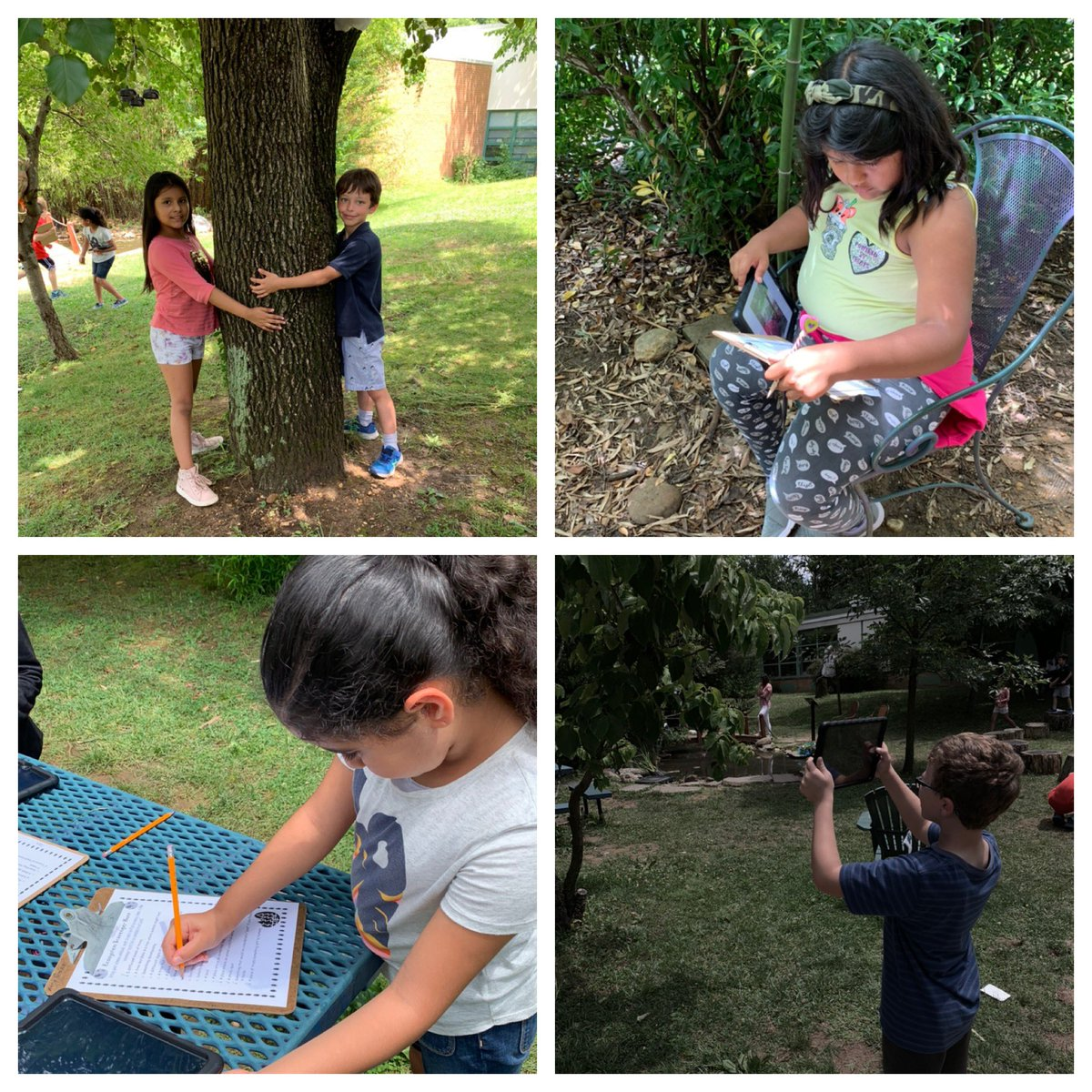 Soaking up the last moments in our outdoor classroom before summer break! <a target='_blank' href='http://twitter.com/CampbellAPS'>@CampbellAPS</a> <a target='_blank' href='https://t.co/tu9TdZ8t03'>https://t.co/tu9TdZ8t03</a>