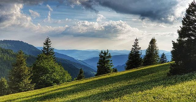 #naturalLandscape #sky #nature #mountainousLandforms #mountain #meadow #wilderness #naturalEnvironment #tree #grassland #field #hill #mountainRange #hillStation #cloud #pasture #highland #grass #alps #landscape #spring #wildflower #plant #ruralArea #moun… https://www.instagram.com/p/By5q-KbIeyf/