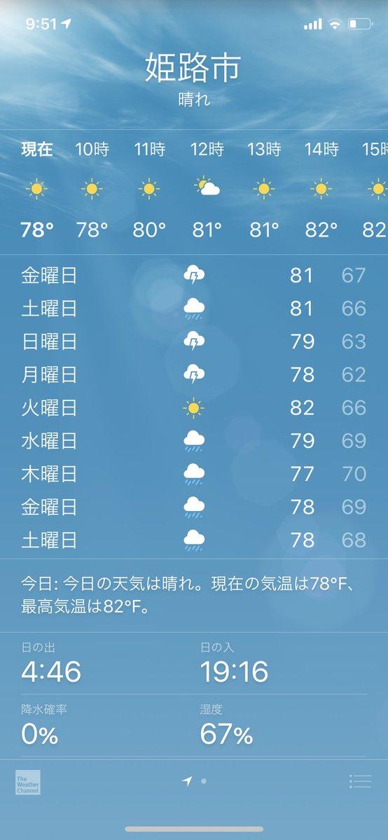 最悪な天気だなおい
