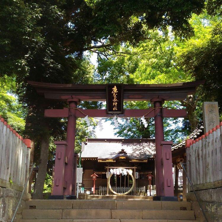 Makata Shrine (Sakura City)  https://japanin.jp/image/52e6c866b21498…  #traveljapan #lovejapan #japanlove #japantrip #japantravel #japanese #japan2018 #japan