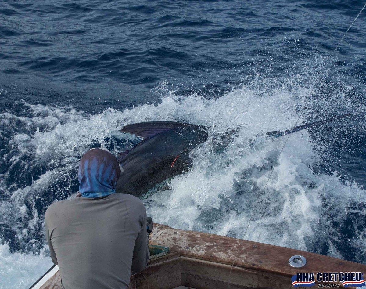 Cape Verdes - Capt. Stuart Simpson on Nha Cretcheu went 3-3 on Blue Marlin (800).