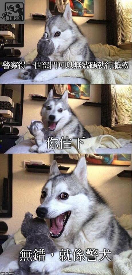 笑死 雖然好似都有number #香港 #香港警察 #反送中