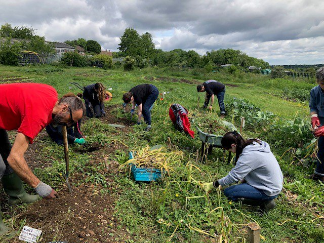 We love when our teams have a day out of the office! A few days ago, our development team volunteered @goodfoodmatter1 - a bio-diverse green site in Croydon that teaches horticulture and nutritional cooking. The community project gives much of what it grows to food banks. 💚🤲