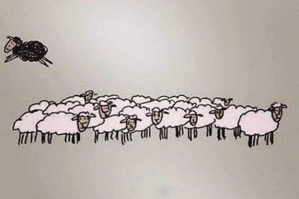 Non abbiate paura di pensare  in modo diverso dagli altri.  #PensieroIndelebile