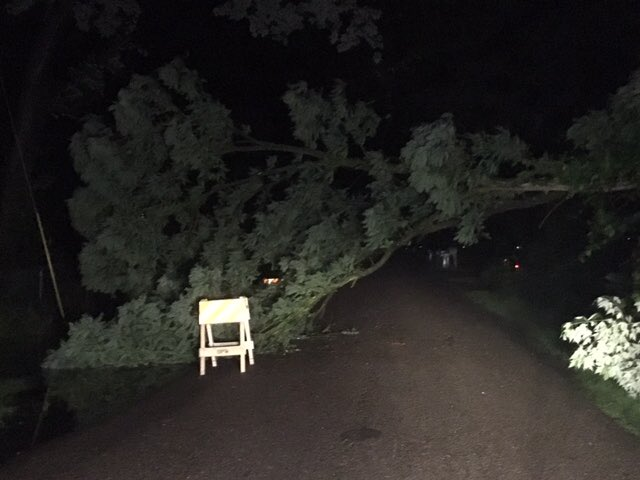 As you head out the door this morning be careful! The weather is causing some issues. Our photographer took this photo of a tree down at E. 62nd & Parker Avenue. We also know roads are closed across Central Indiana due to flooding.