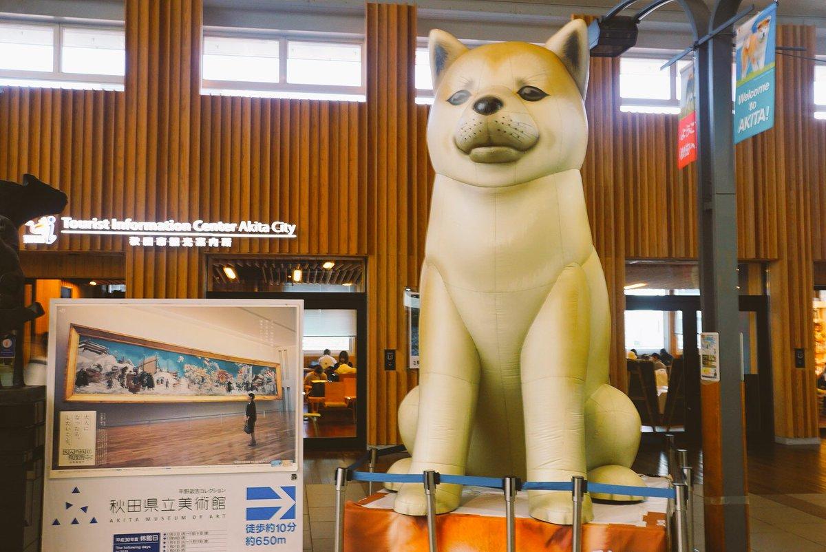秋田港への出張ついでにポートタワーセリオンへ。窓の「輝☆」は吉田輝星のサインだそうだ。 背後の山は男鹿半島。8年ほど前に行ったが赤神神社はなかなか良かった。懐かしい。 最後の大きな秋田犬はなまはげと一緒に秋田駅にいた。 https://t.co/rd16s8V4Df