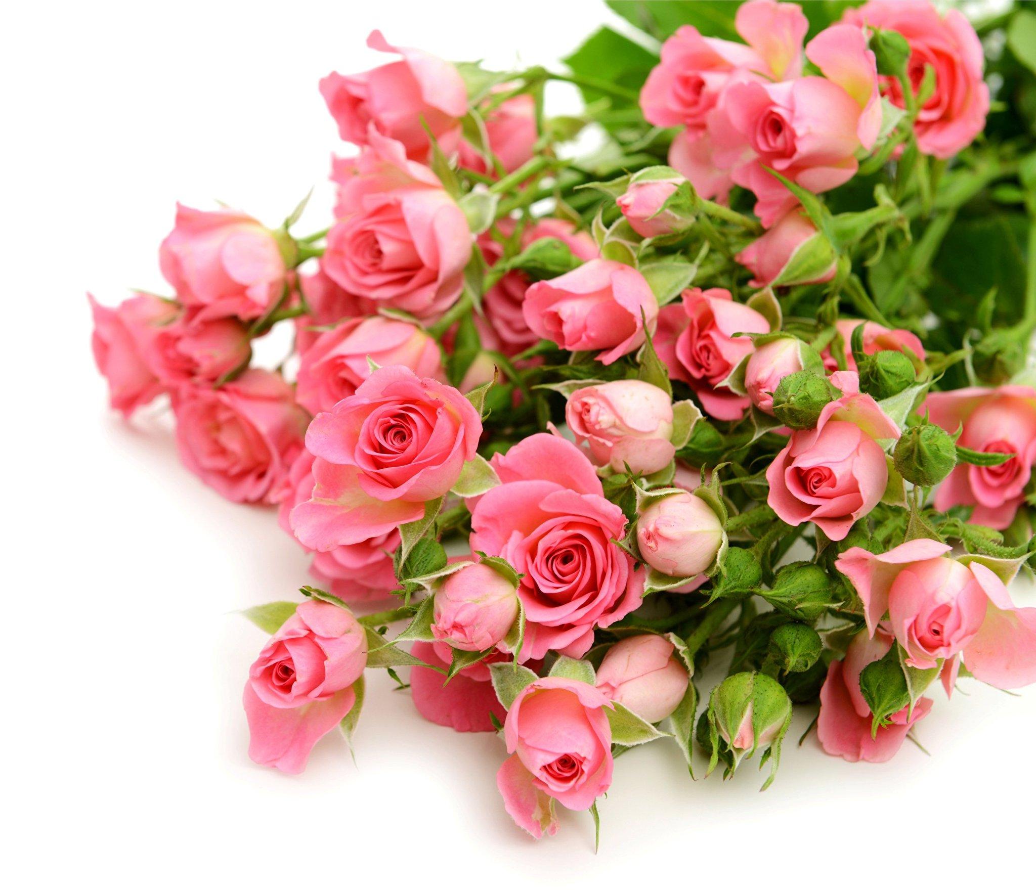 Картинки с днем рождения цветы без надписей