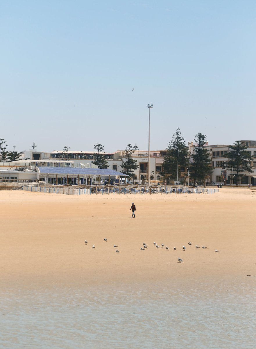 People in Essaouira, Morocco 🇲🇦 #art #Photography #Morocco #earth #people https://t.co/ndg8gjVXxU