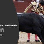 Image for the Tweet beginning: .@carruseltaurino te cuenta los #toros.