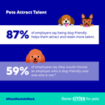 Image for the Tweet beginning: Why go pet-friendly at your
