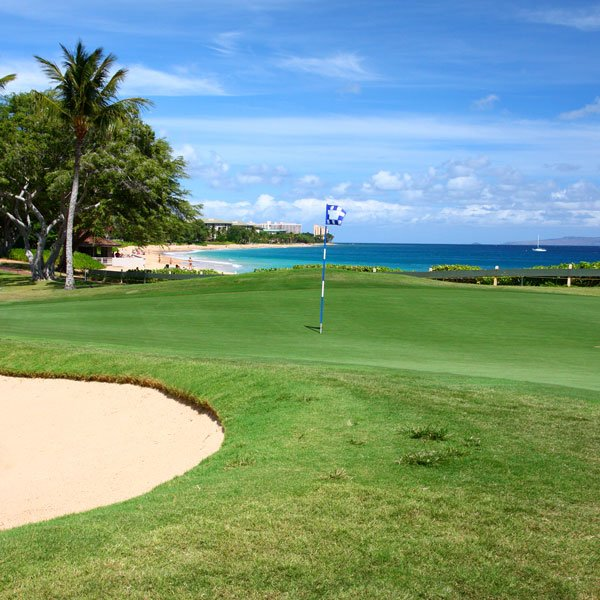 Visiting Maui soon? Check out these tips if you plan to get out on the green! 🏌️  https://t.co/ckF8FNCOHf https://t.co/mmQBVB2jfc