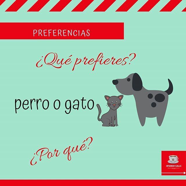 ¿Eres más de perro o de gato? (Significa que si te gustan más los perros o los gastos) ¿Por qué? . . . . #spanish #spanishlessons #spanishvocabulary #spanishchallenge #spanishonlineteacher #spanishteacherfrombarcelona #spanisheveryday #spanishcalls #espa… http://bit.ly/2x5d4en