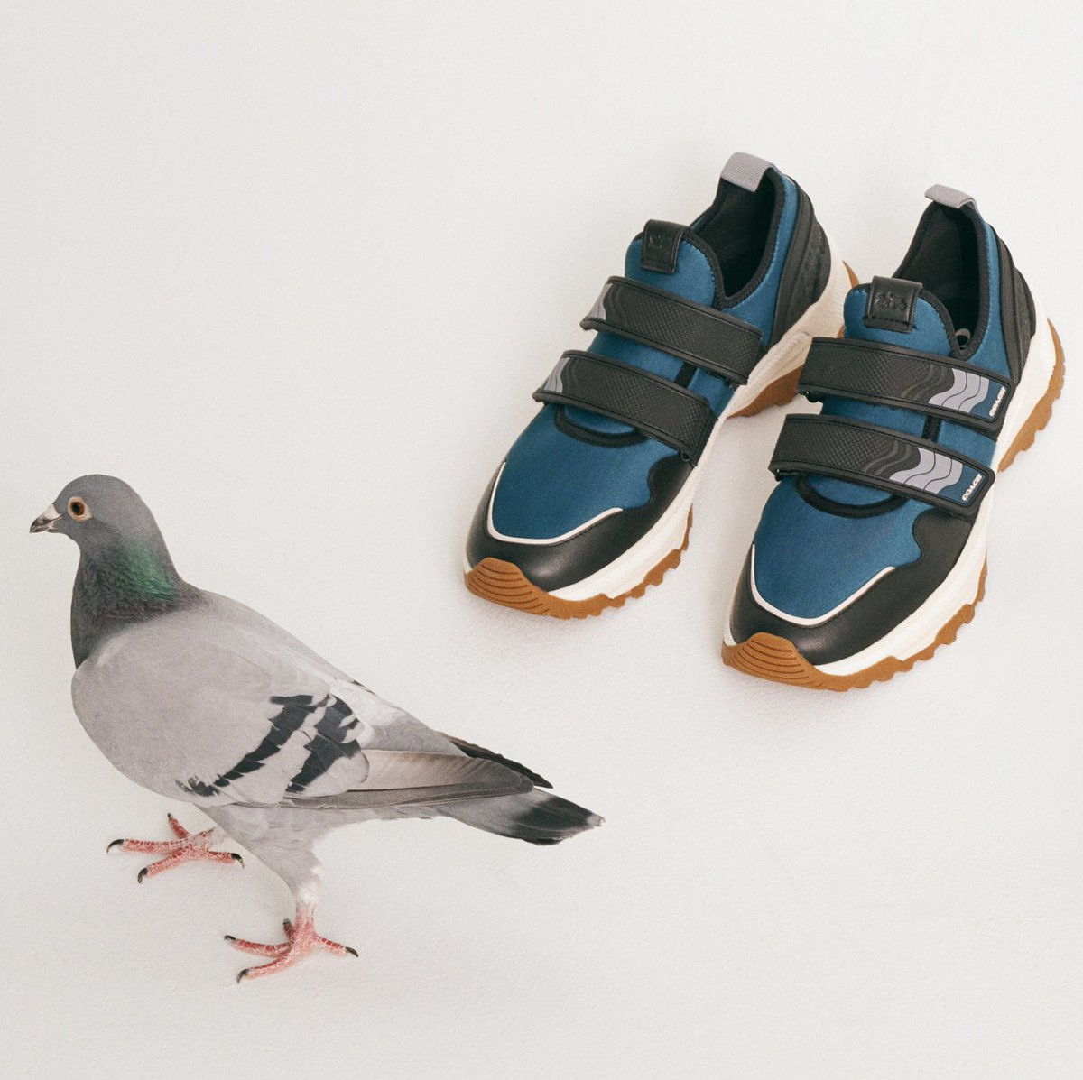 Go toe-to-toe with the local wildlife in our C143 Two Strap Runner. http://on.coach.com/NewSneakers #CoachNY