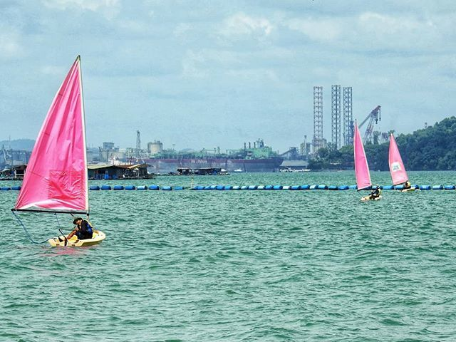 To catch the wind, one has to take the effort to get into the right place and time  #singapore #ig_singapore #cityscape #hometowntourist #city_explore #nikonp900 #nikonphotography #pasirrispark #sailing