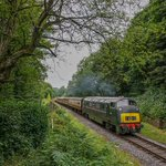 Image for the Tweet beginning: Our Summer diesel gala is