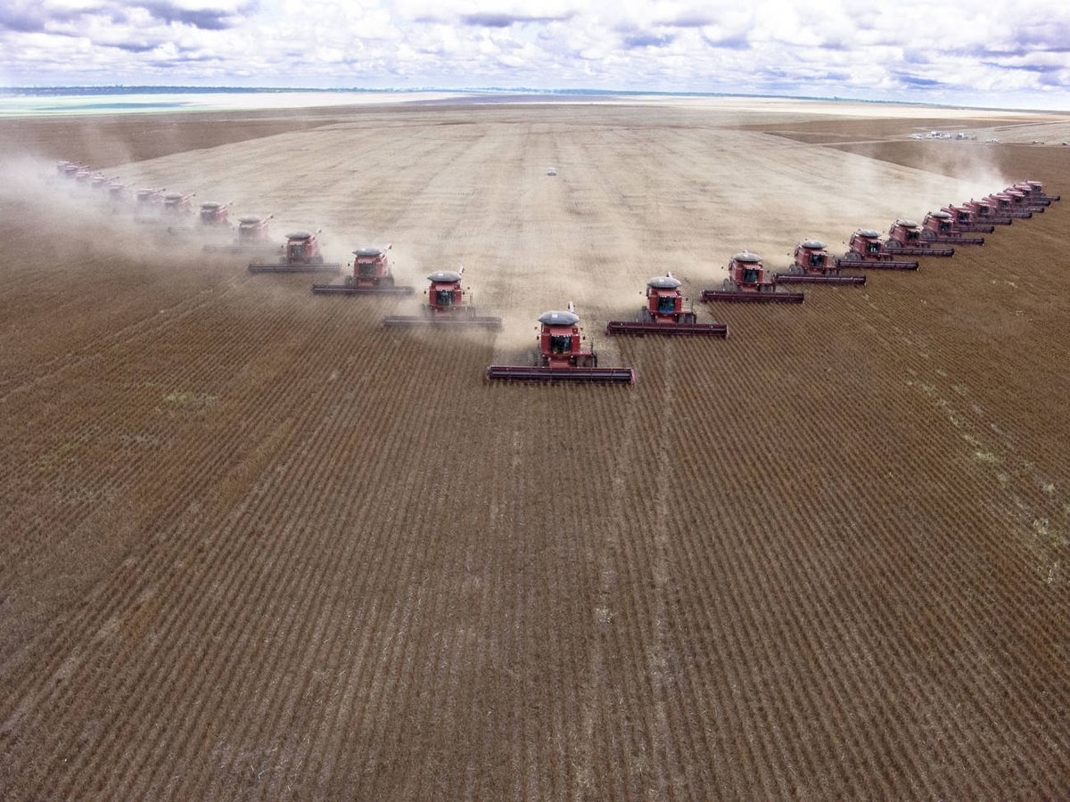 8de58406 Jobber dere også for krav om at import av mat og fôrråvarer som soya fra  Latin-Amerika skal være bærekraftig og avskogingsfri når dere nå forhandler  ...
