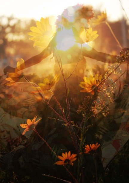 #SummerSolstice   ︵‿︵‿︵‿︵︵ Let us dance in the sun,  wearing wild flowers in our hair ︵‿︵‿︵‿︵︵  ~Susan Polis Schutz~  #FridayThoughts #HappyFriday<br>http://pic.twitter.com/gIz3SvC7t4
