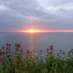 Image for the Tweet beginning: Summer solstice at Berry Head! #brixham