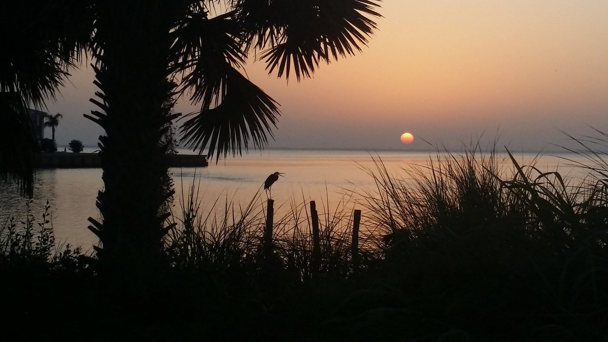 Open wide!! Longest day of the year. Good morning summer! #lovefl <br>http://pic.twitter.com/Vb2Uc3CvwU