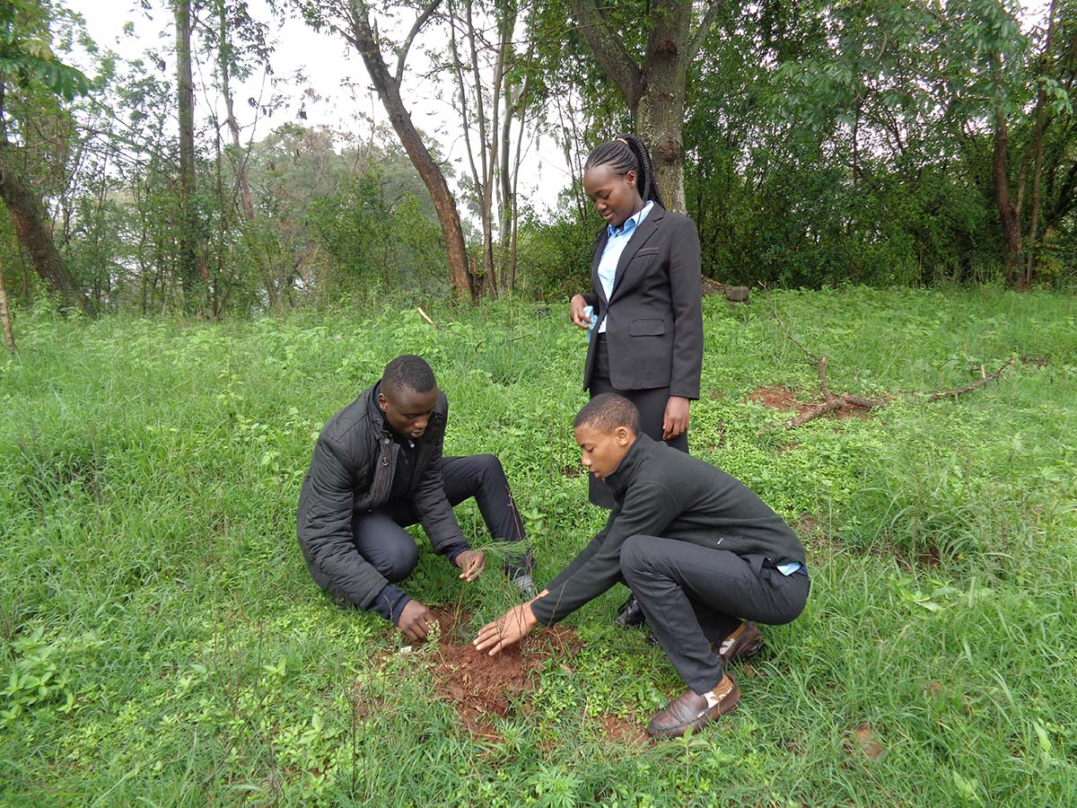 "Kenya - Youths of ""Don Bosco Boys' Town"" plant 100 trees https://t.co/iW7wkjrKVr https://t.co/kXZVgK6QD2"