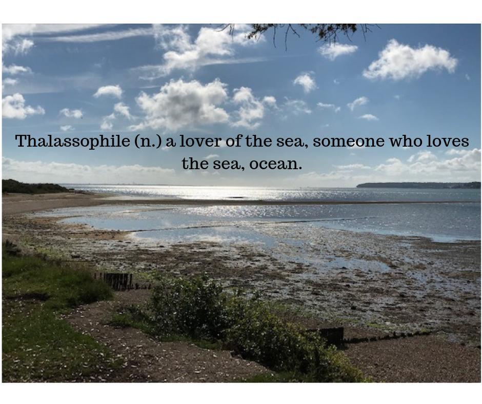 #WordOfTheDay #Beachlife #getoutdoors #nature #wild #sea #adventure #LoveLepe