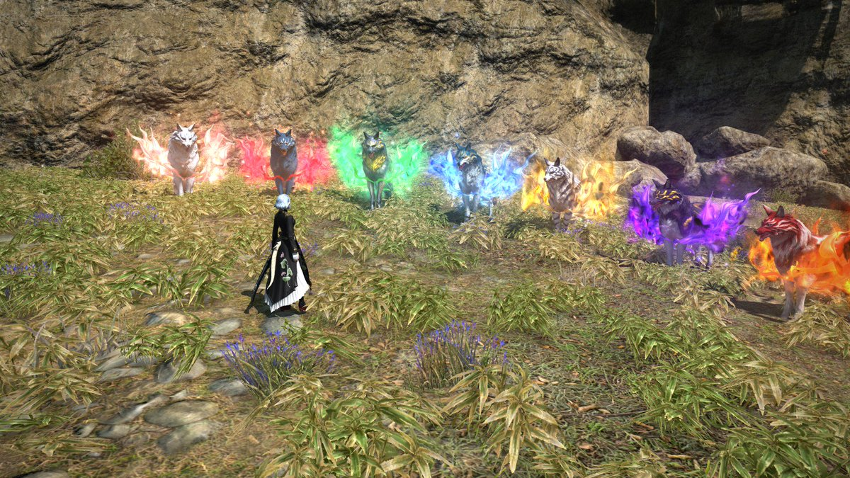 FUTURE GENERATIONS WILL SPEAK OF ME, TENIKAY, CONQUEROR OF GODS, TAMER OF THE MOST DIVINE BEASTS! GAMERS RISE UP!! #FFXIV