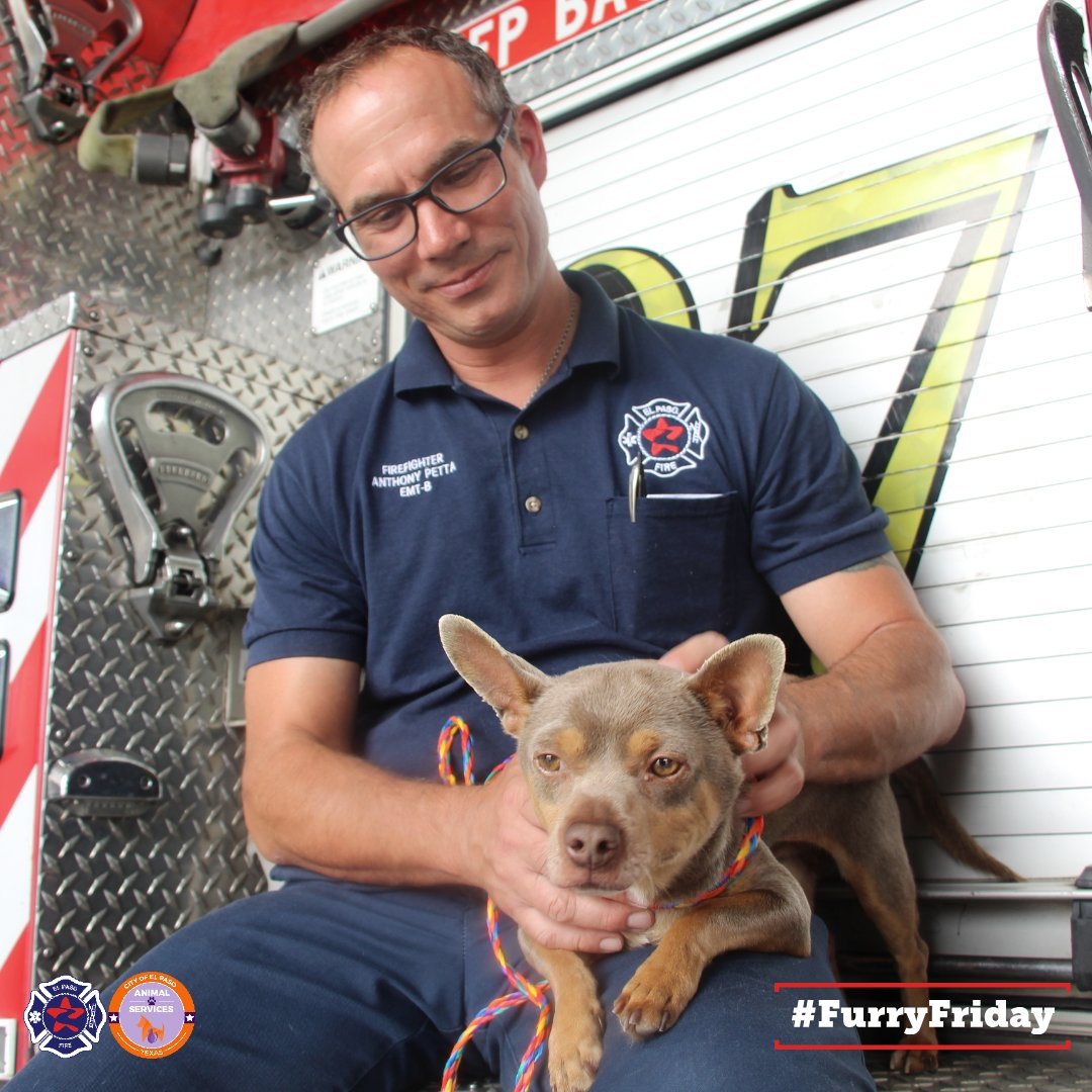 Did you find a lost pet?! Bring him to any station so one of our friendly firefighters, like FF Petta, can scan their chip. Thanks to our recent partnership with @ElPasoAnimalSvc, all of our stations are equipped with scanners to help lost pets find their homes!!  #FurryFriday <br>http://pic.twitter.com/8sAff57mOv