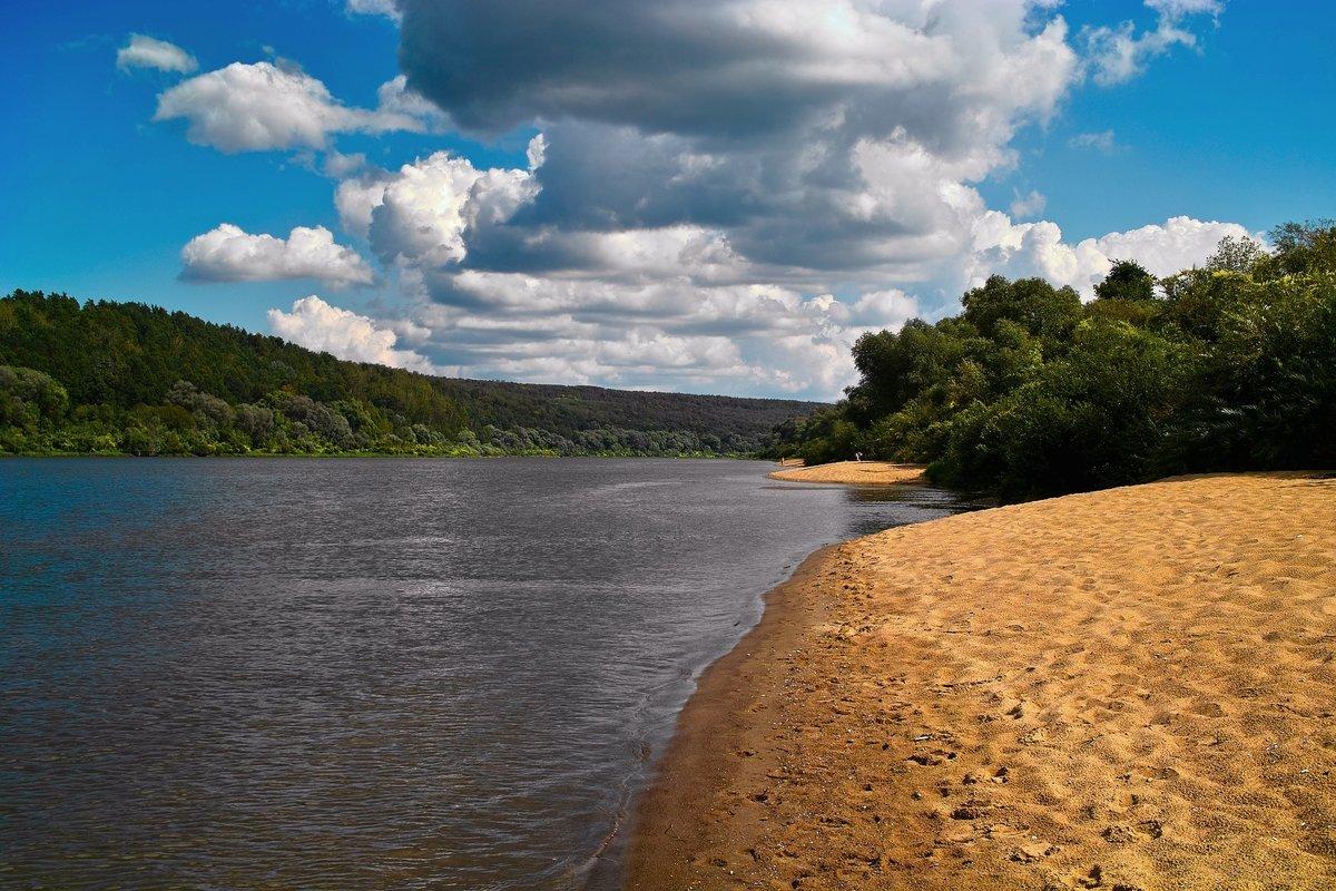реки с песчаными берегами фото красивых рек дерево может