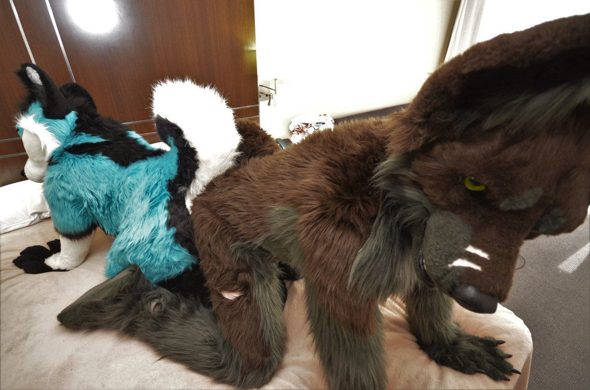 When you get knotted with @DarekWingoAD  -@ikecrow  #yiff #fursuit #fursuiting #furryfandom #knotted #yiffing<br>http://pic.twitter.com/UtX2q7GYdC