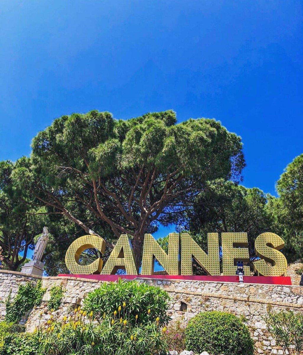Bon week-end ☀️🌴😎   📸 @cannesislove_   #FrenchRiviera #frenchrivieraguide #cotedazur #cotedazurfrance #cotedazurtourisme #cannesisyours #cannesfrance #cannes #summer #coteazur #cotedazurlife #unlimitedfrenchriviera
