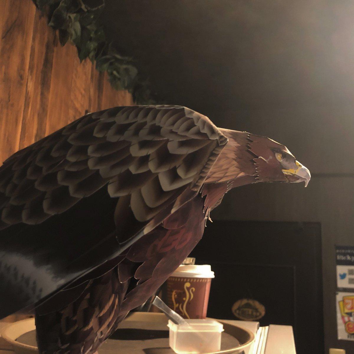 小翼羽を意識して翼を作り直しましたが、もう少し小翼羽を大きく目立たせた方が「らしく」なりそうですね。  #papercraft #goldeneagle #イヌワシ #ペーパークラフト #令和 #令和元年 #ふくろうカフェricky仙台店