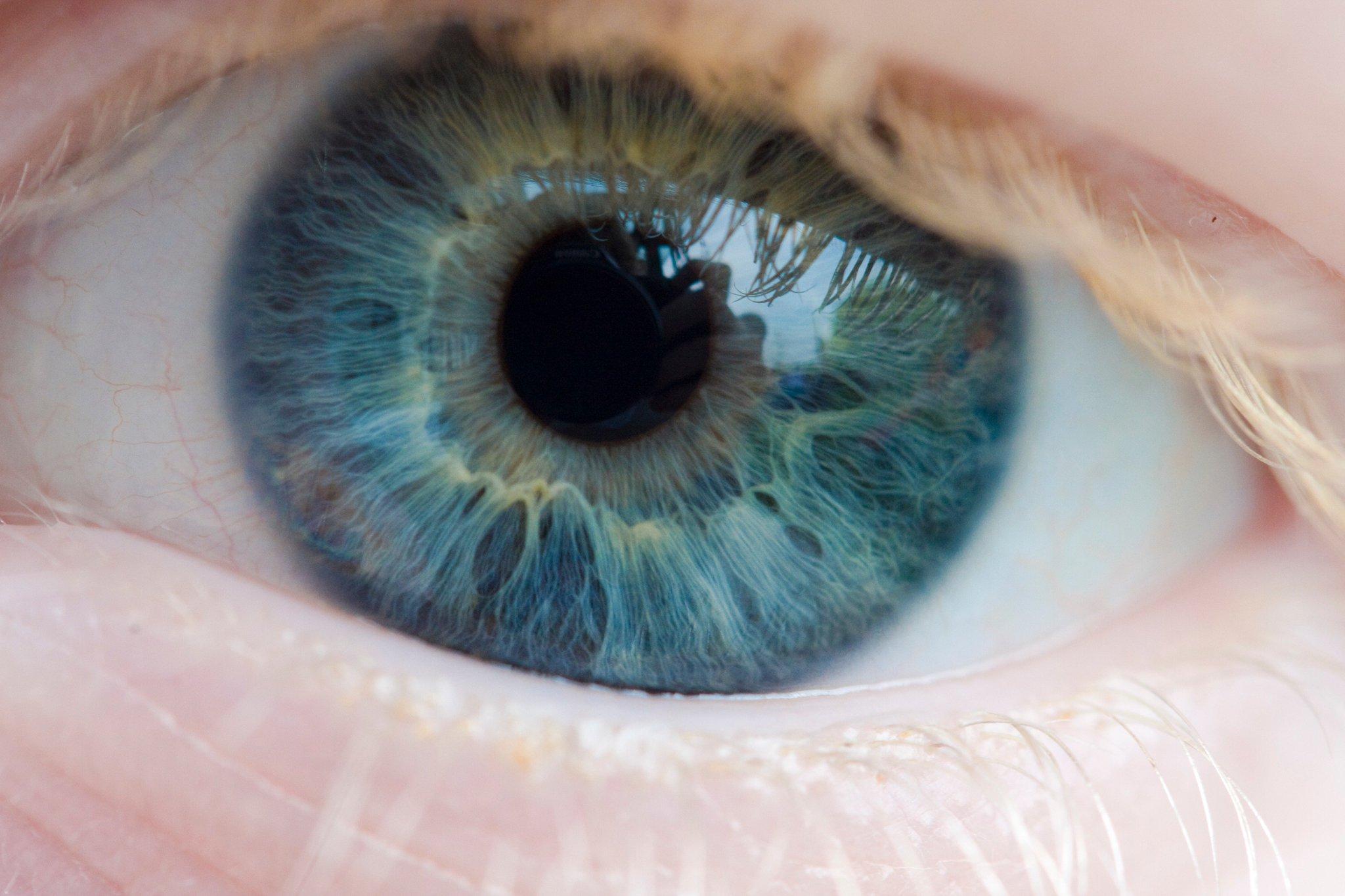 Картинки голубые глаза восхитительны, рождественскую открытку