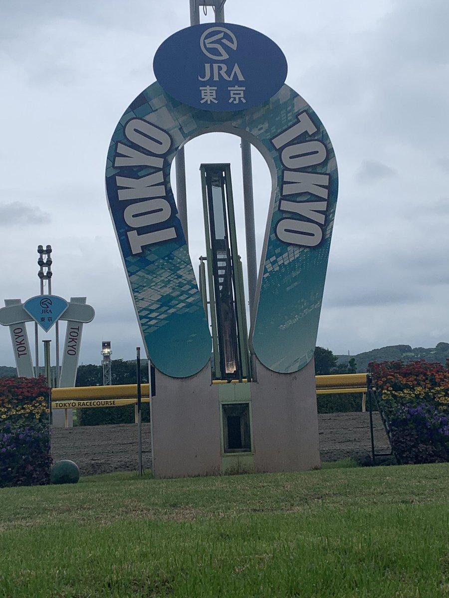 東京競馬場ありがとう また秋にアウォーディー! #東京競馬場 #馬場解放