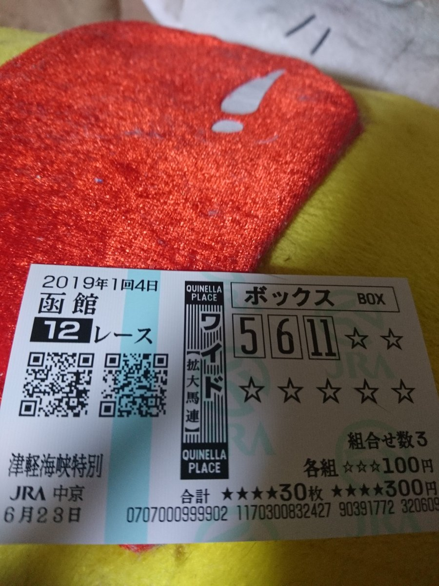 東京9レースの木幡巧也くんの馬券を換金するついでに買った函館12レース。  しんどくなってレース見ずに帰ってきた。 今結果見たらなぜだか当たってた。