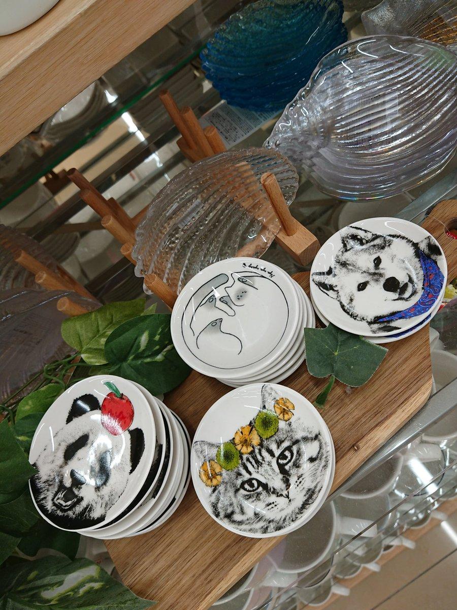 test ツイッターメディア - DAISOで販売されていた皿‼️ 可愛いいね‼️(*´∀`)♪🌸🌸 #DAISO #ダイソー #猫 #猫好き #猫のいる生活 https://t.co/CXeAOFm8bk