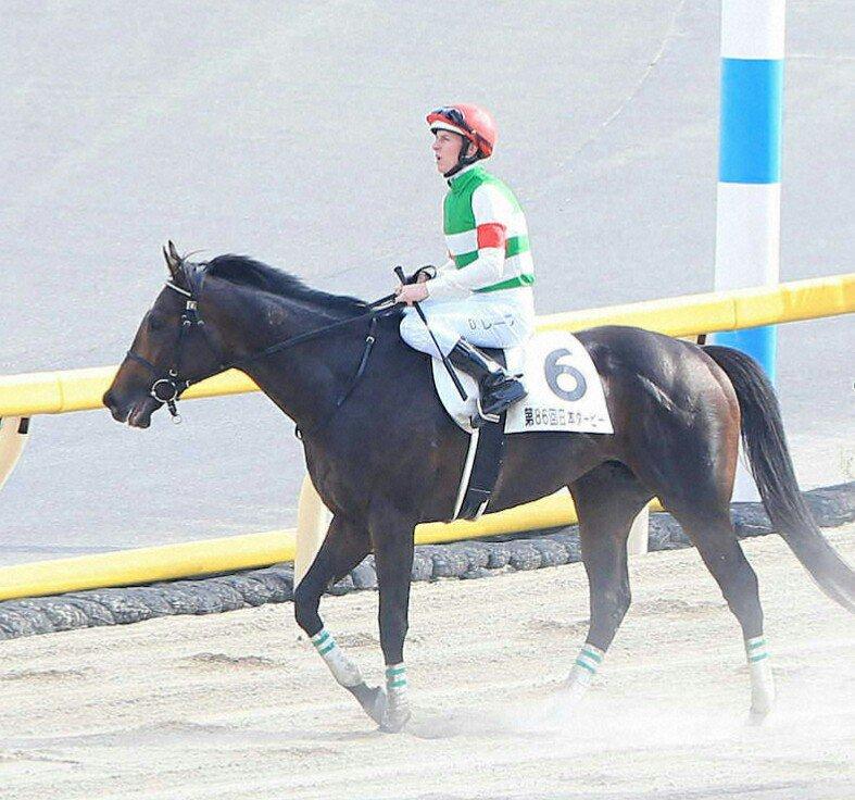 日本ダービーで1番人気4着だったサートゥルナーリアの秋の始動戦がGⅡ神戸新聞杯(9月22日)に決定。「ダービーと同じ距離で始動して、その距離でいけるのか、距離を縮めなければいけないかみてみます」と角居調教師。鞍上はクリストフ・ルメール騎手を予定とのことです。 https://t.co/nF68wtkMno