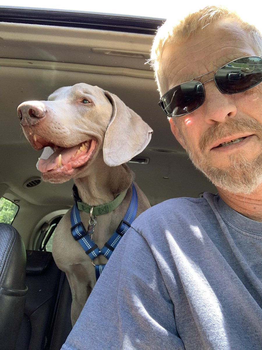 Ernie Trippin Sunday  Reminder: He's in idiot!! actually, last year his mom decided to move and after 11 years, get rid of him. He's 12 now #petsarefamily #petsareforlife #DogsofTwittter #GrayFaceMafia #rescuedog #AdoptDontShop<br>http://pic.twitter.com/rQx2hO9YIN