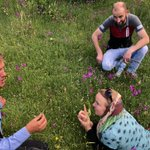 One important part of #ethnobotany research is exchange of knowledge. In Borje, locals led us to a meadow full of orchids & endemic wildflowers—& we shared knowledge on how to identify different species based on their floral characteristics. It's all about sharing! #collaboration