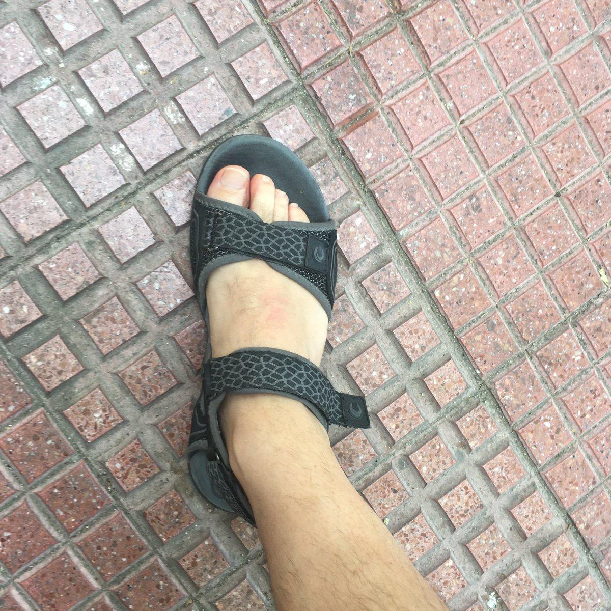 Media Tweets Luis Media By Tweets By TorijaluistorijaTwitter Luis tQdsrh