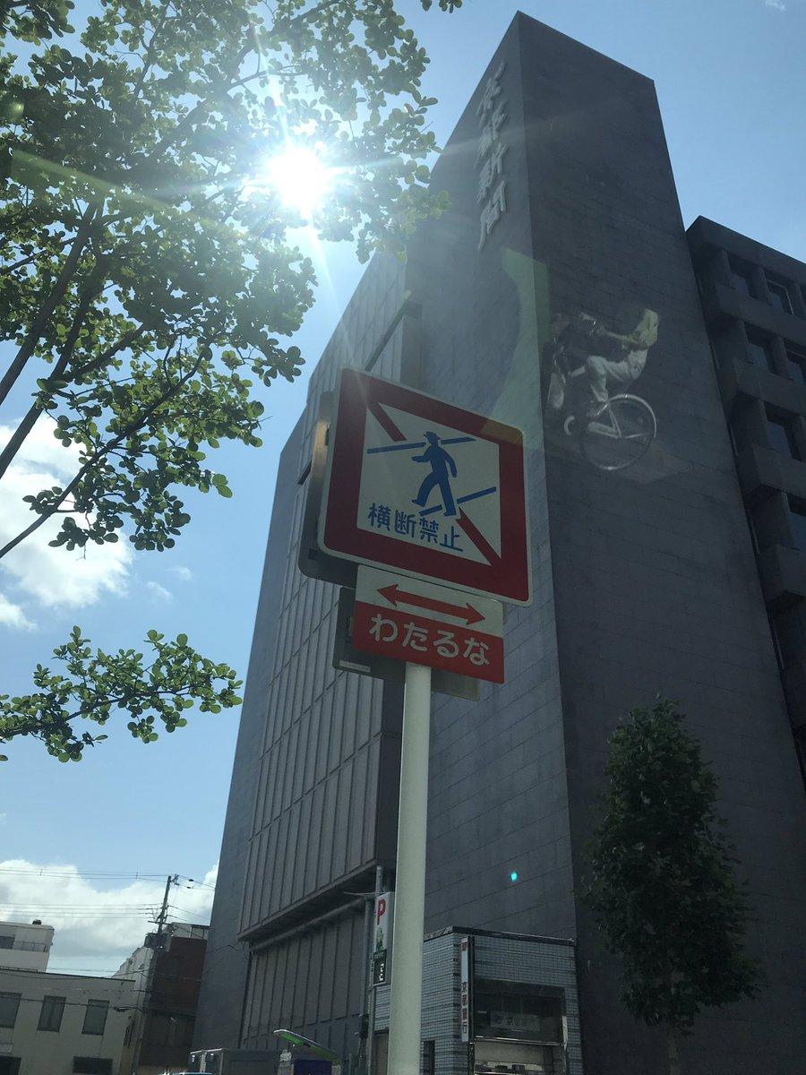 見にくいけど京都新聞  ダービー馬ロジャーバローズが2着した京都新聞杯😆  京都はクソ暑いなぁと思ったけど昨日は日中ずっとスタンド内にいたんだった😵💦