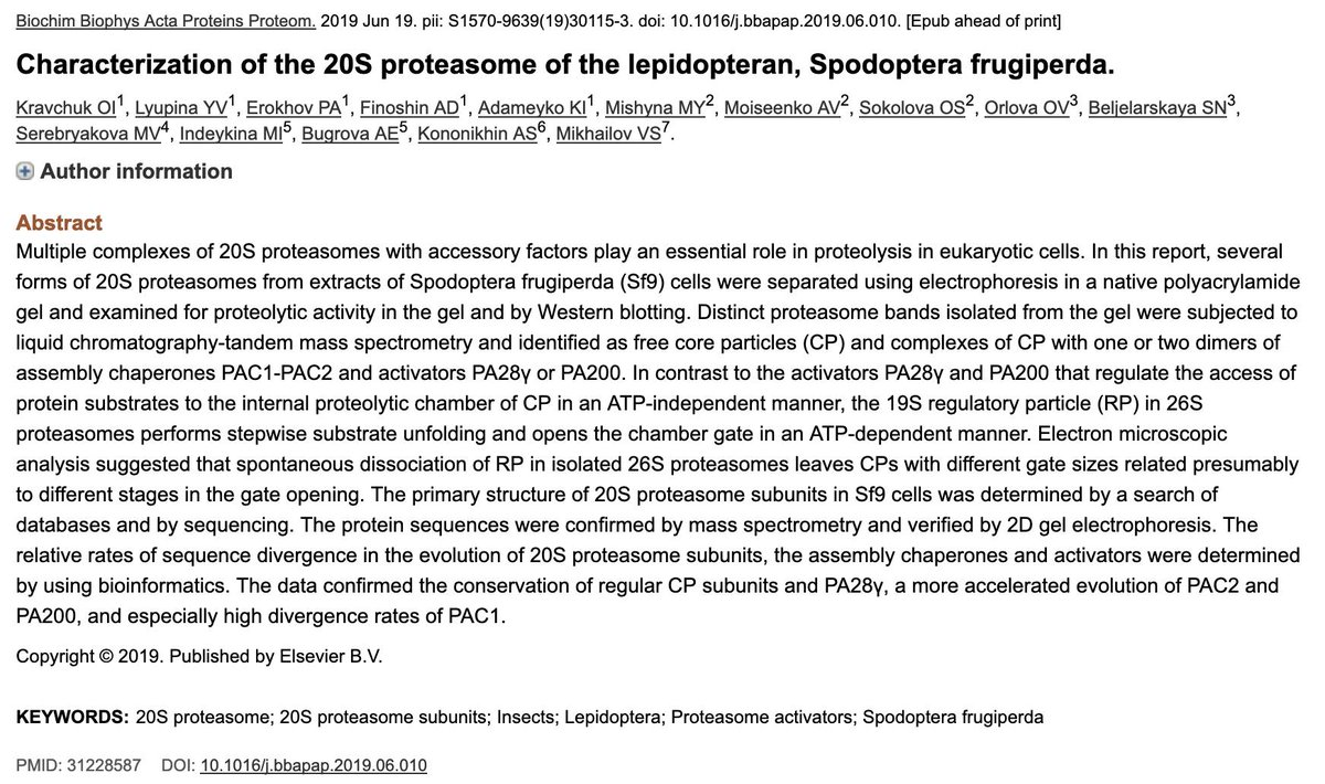 Characterization of the 20S #proteasome of the #lepidopteran, #Spodoptera frugiperda.  https://www.ncbi.nlm.nih.gov/pubmed/31228587