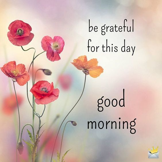 Good Morning Everybody  I wish you a perfect Monday and a great week All in good humor in tenderness and joy blessing to all  and take care of you my friends smile <br>http://pic.twitter.com/BqeQ5SjU6A