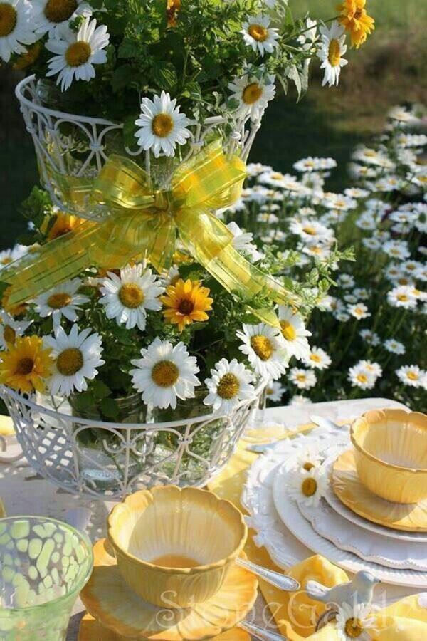 картинки солнечного утра с цветами вырез под