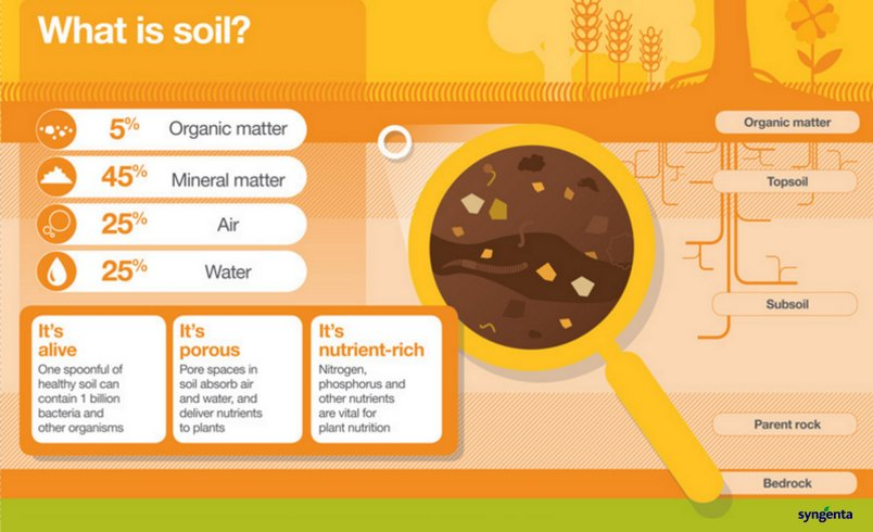 Do you know what soil is made of check out our for learn for What is soil made out of