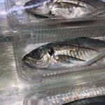「このスーパーの魚はみんな死んだ魚の目をしている!」真剣に激オコしてるおっさん!