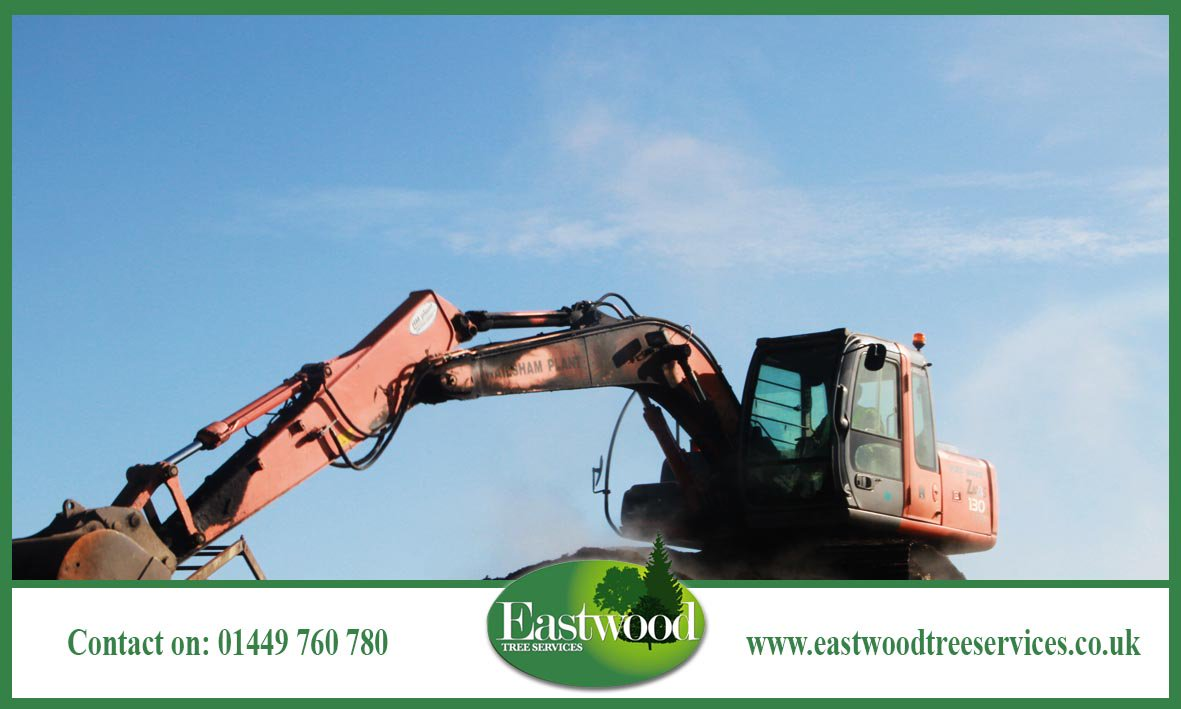 Click here for #TreeCare in #Eastwood &gt;&gt;&gt;  http:// bit.ly/EastwoodTreeSe rvices &nbsp; …  #TreeSurgery #TreeSurgeon #Arborists<br>http://pic.twitter.com/JZRdF0DSft